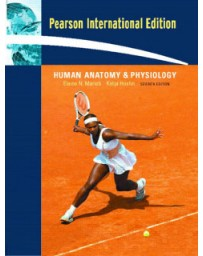 Human anatomy - physiology  7th edition