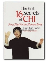 The First 16 Secrets of Chi - Feng Shui for the Human Body