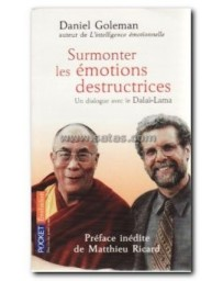 SURMONTER LES EMOTIONS DESTRUCTRICES. Un dialogue avec