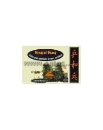 Ping et Pang. Cahier pour apprendre à écrire en chinois