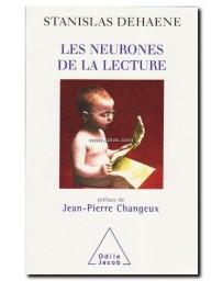 Les neurones de la lecture