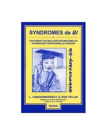 Syndromes de Bi ou traitement des maladies rhumatismales en médecine traditionnelle chinoise