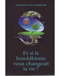 Et si le bouddhisme vous changeait la vie ?