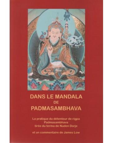 Dans le mandala de Padmasambhava