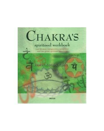 Chakras's. Spiritueel werkboek