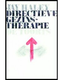 Directieve gezinstherapie