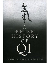 A Brief History of Qi