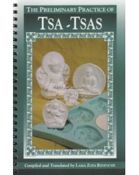 The Preliminary Practice of TSA -TSAS