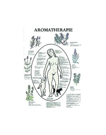 Aromatherapie (Poster A2)