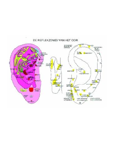 De reflexzones van het oor  (Poster A2)