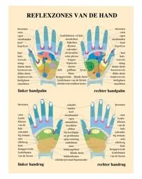 Reflexzones van de hand (Poster A2)