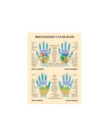 Reflexzones van de hand (Poster A3)