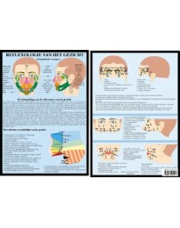 Reflexologie van het gezicht  (Poster A4)