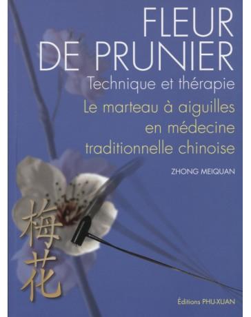 Fleur de prunier - Technique et thérapie, Le marteau à aiguilles en médecine traditionnelle chinoise
