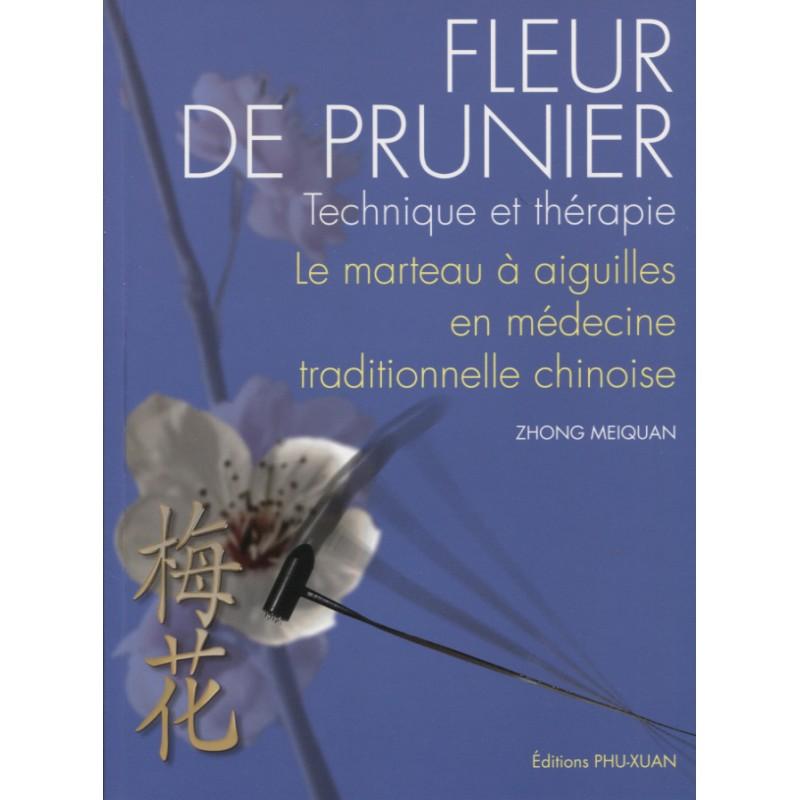 Fleur De Prunier Technique Et Therapie Le Marteau A Aiguilles En Me