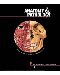 Anatomy - Pathology - Improving World Health Through Education and Information  4th Edition