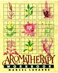 Aromatherapy - Workbook