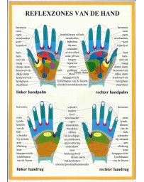 Reflexzones van de hand (Poster A4)