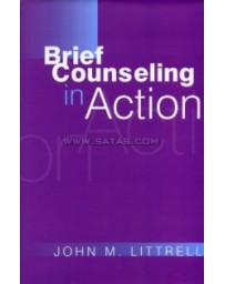 BRIEF COUNCELLING IN ACTION    BOOK HC