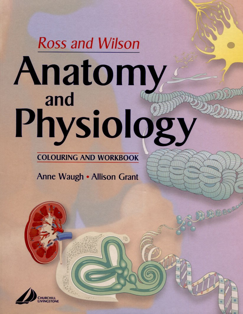 Anatomy Ross And Wilson Images - human body anatomy