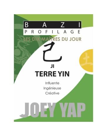 Bazi profilage - Les 10 Maîtres du jour - Ji Terre Yin