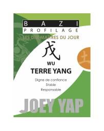 Bazi profilage - Les 10 Maîtres du jour - Wu Terre Yang