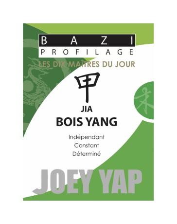 Bazi profilage - Les 10 Maîtres du jour - Jia Bois Yang