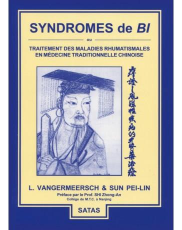 Syndromes de Bi ou traitement des maladies rhumatismales en mtc (Bleu - légèrement abîmé)