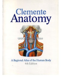 Anatomy. A Regional Atlas of the Human Body