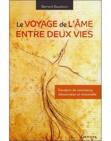 Le voyagede l'âme entre deux vies - Transferts de conscience, réincarnation, ....
