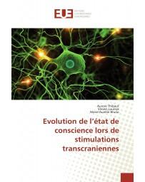 Evolution de l'état de conscience lors de stimulations transcraniennes