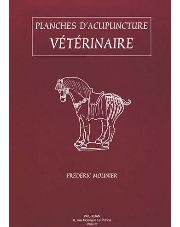 Planches d'acupuncture vétérinaire - Le Cheval (set de 12 planches)