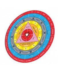 Disque GPS ® -  Guide Pédagogique Synthétisé de l'hypnose clinique